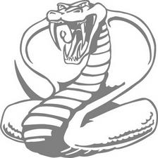angrycobra